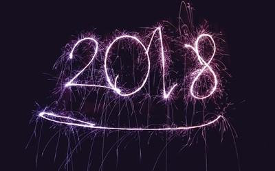 Året som gick 2018