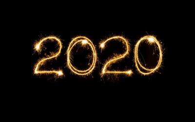 Året som gick 2020
