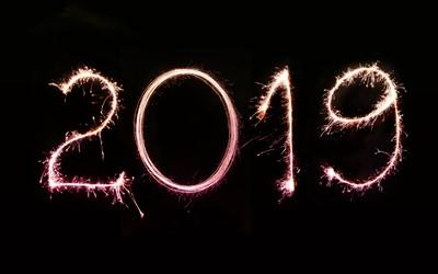 Året som gick 2019